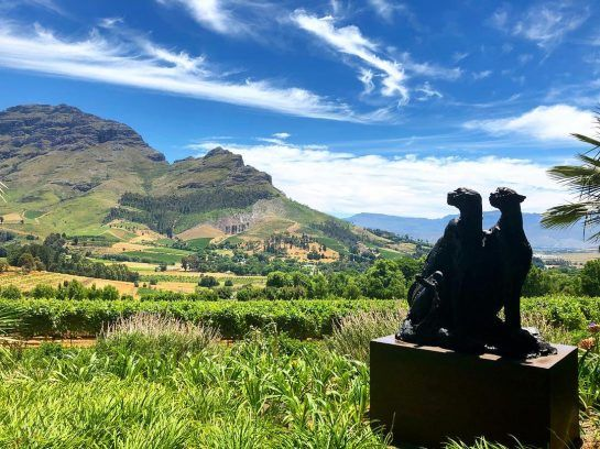Valtteri Bottas in South Africa