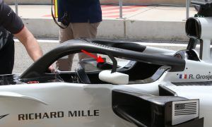 FIA authorizes the mounting of mirrors on the Halo